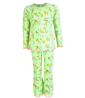 Claesen's Pyjama Roses