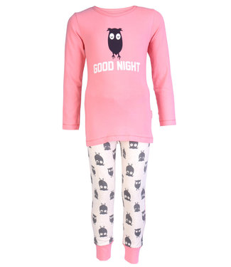 Claesen's Pyjama Owl