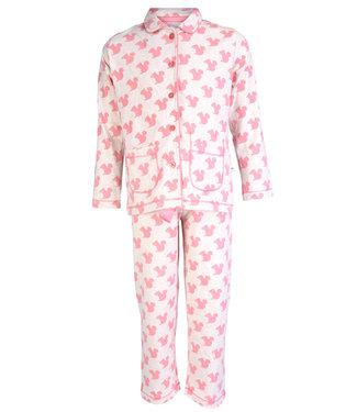 Claesen's Pyjama Squirl