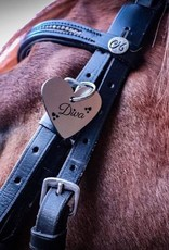 Personalisiere Deine Pferdemarke mit Grafiken und Texten mit verschiedenen Schriftarten
