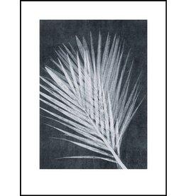 Pernille Folcarelli 30 x 40cm Dark Gray Paper Palm Print