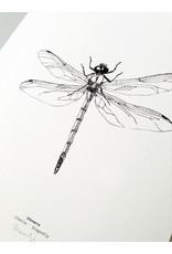 """Maartje van den Noort """"Libelle"""" artprint A4"""
