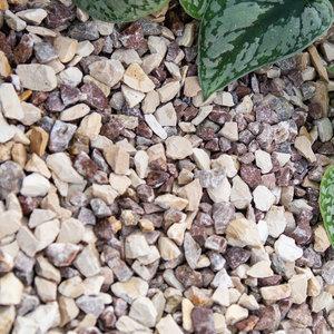 Eurocompost Garden Products Cappucino split 8/16  in Mini Bag 500kg