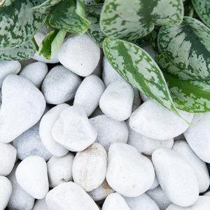 Eurocompost Garden Products Carrara grind 40/80 Big Bag 1800Kg