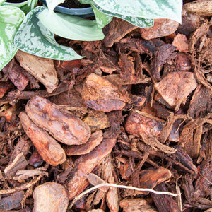 Eurocompost garden products Franse Schors 12/25 in Midi bag  0.75m³