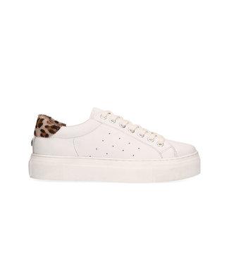 MARUTI Maruti Footwear Ted 66.1427.02