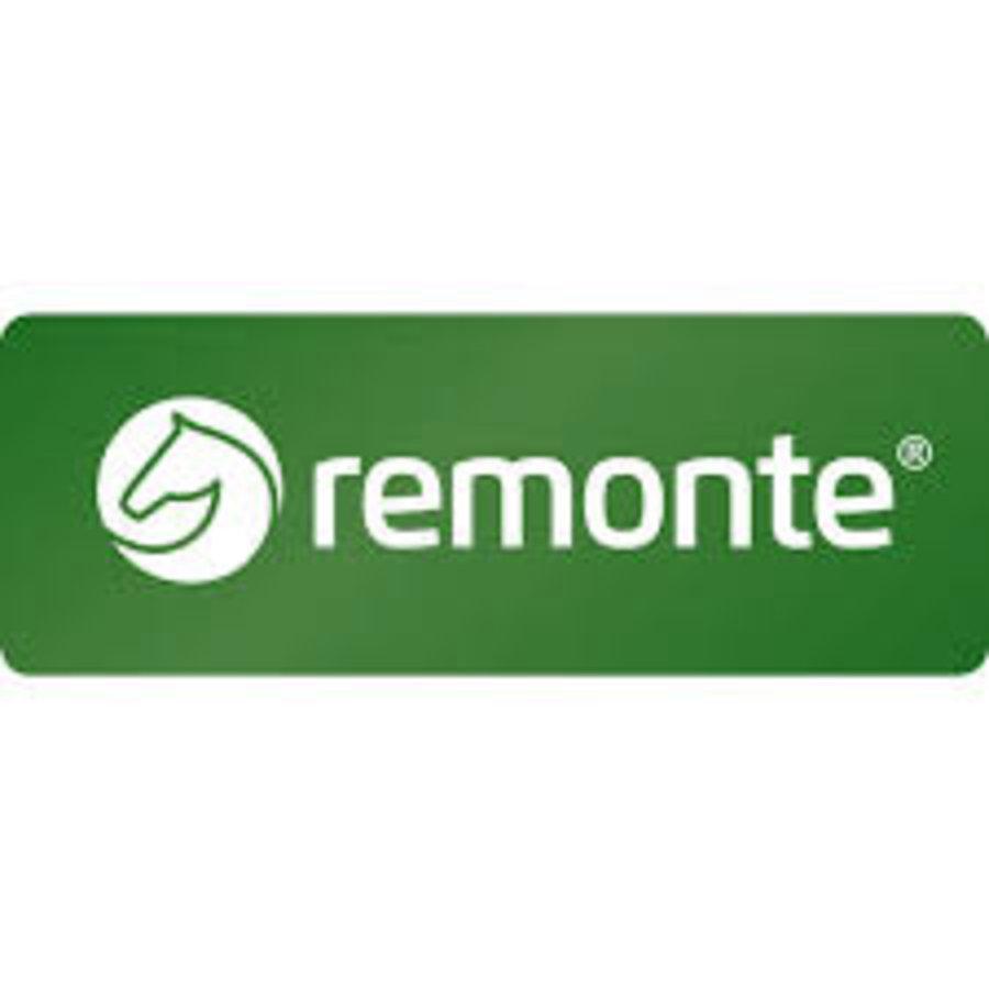 REMONTE