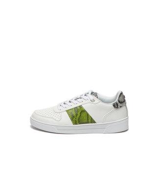 TED BAKER Ted baker sneaker COPPIRR-Exotic Emboss 241717