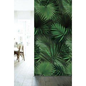 KEK Amsterdam Fotobehang Tropisch Palm