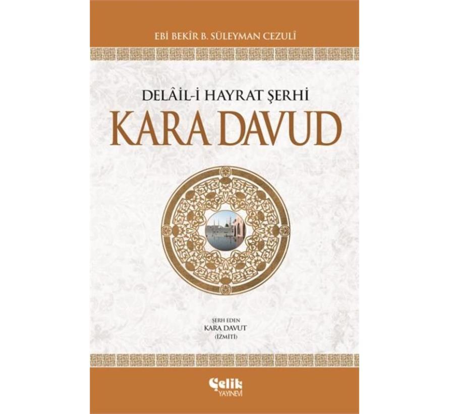 Kara Davud I  Delaili Hayrat Şerhi