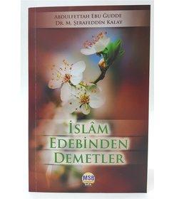İslam Edebinden Demetler