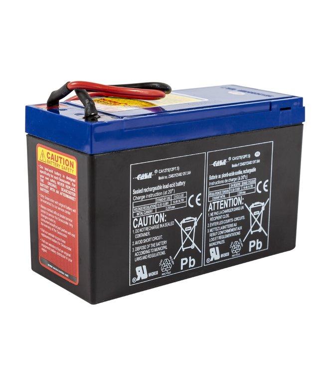 Yamaha Battery for RDS200-Explorer-Seal
