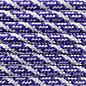 123Paracord Paracord 550 type III Acid Paars / Zilver Grijs Helix DNA
