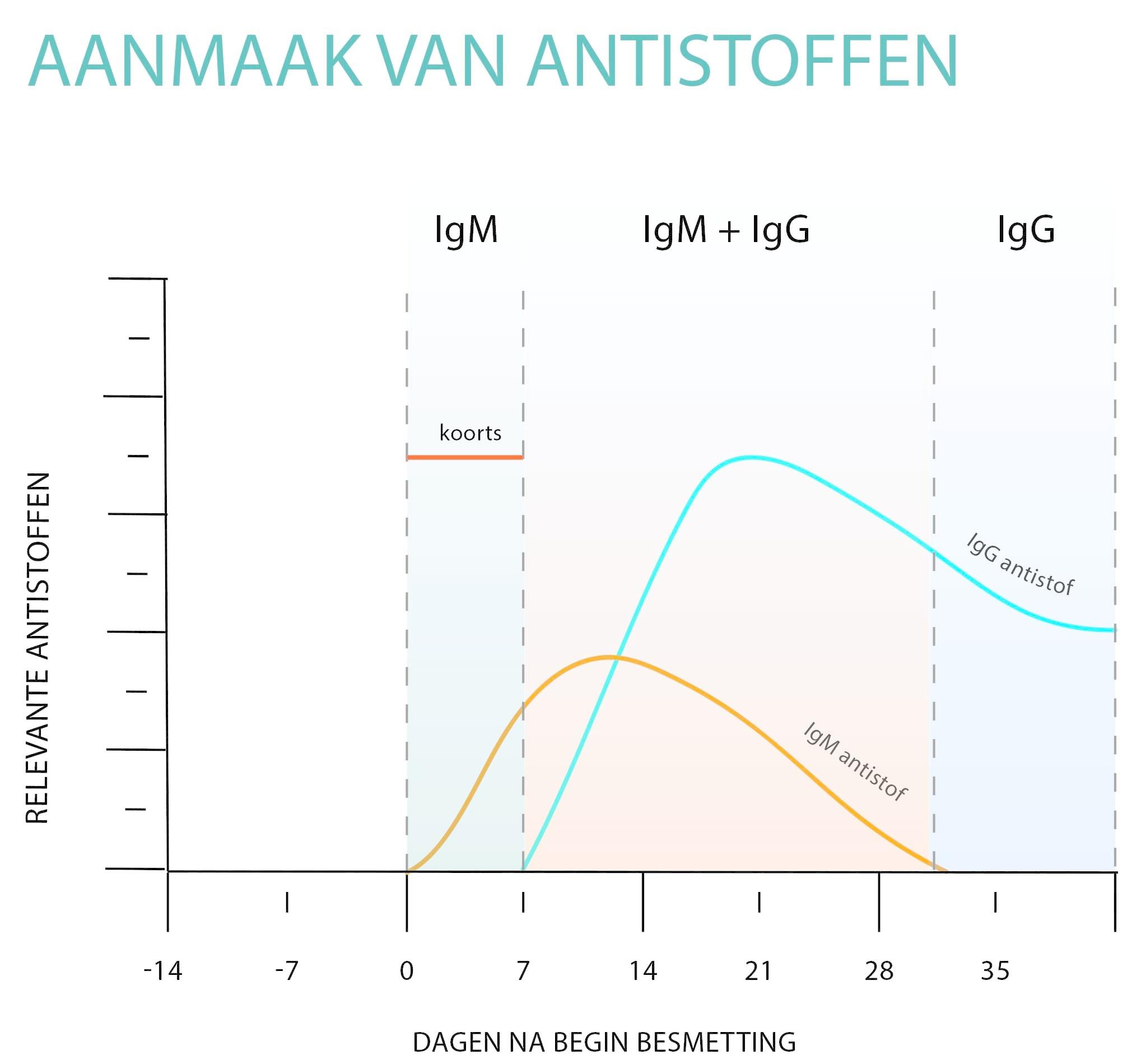 antistoffen bij bloedtest