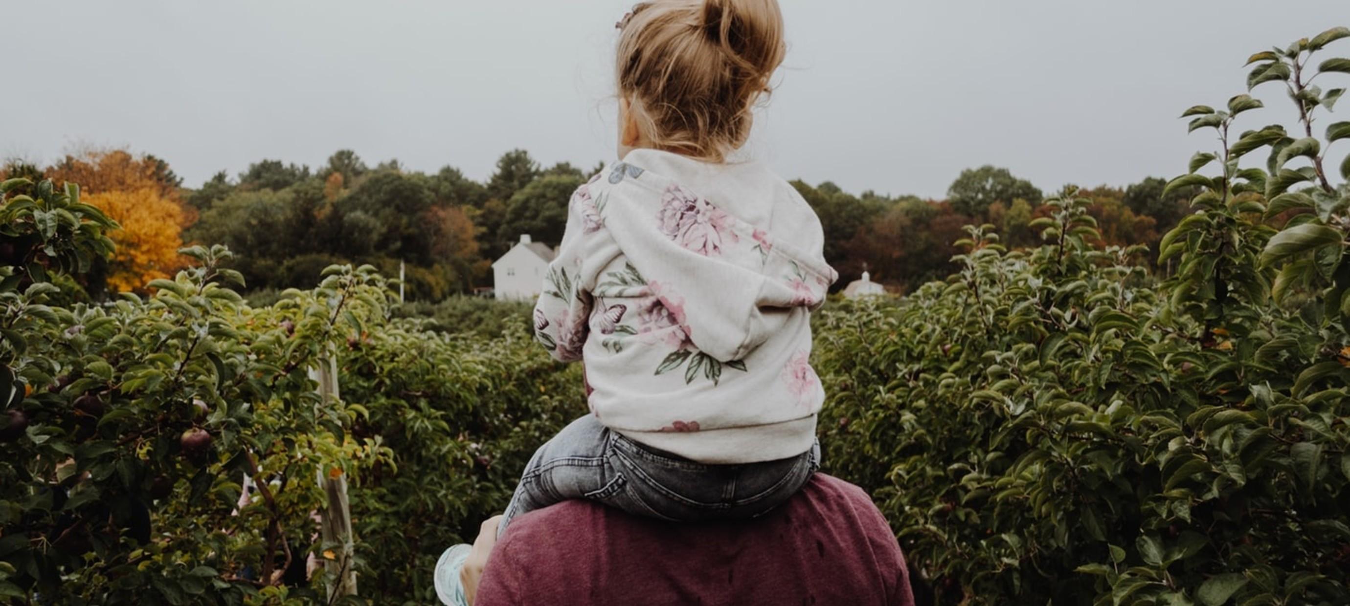 Gedragstips voor gescheiden ouders