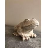 Garten Perfekt  Dekofigur Frosch aus Zement PP-005