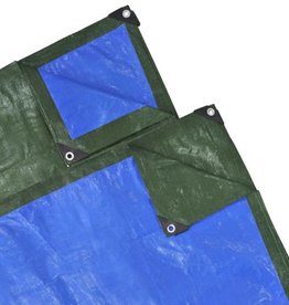 vidaXL Afdekzeil PE 5 x 6 m 100 g/m2 Groen/Blauw
