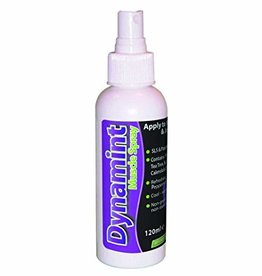 Dynamint Dynamint Muscel Cream 120ml