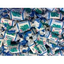 De Bron - Pepermunt Toffees Suikervrij 200 Gram