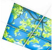 PURPL Wolkenplafond Acrylplaat | 3mm dik