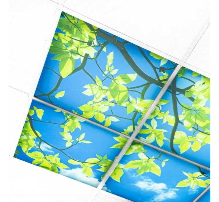 Wolkenplafond Acrylplaat 3mm dik