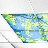 Wolken Plafond