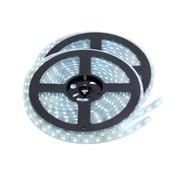 PURPL LED Strip Koud Wit | IP20 | 120 Leds p/m | 10 Meter | 12V - 24V