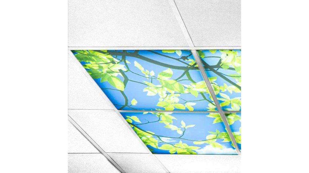 Wolkenplafond Acrylplaat | 3mm dik | Afbeelding 9 t/m 12