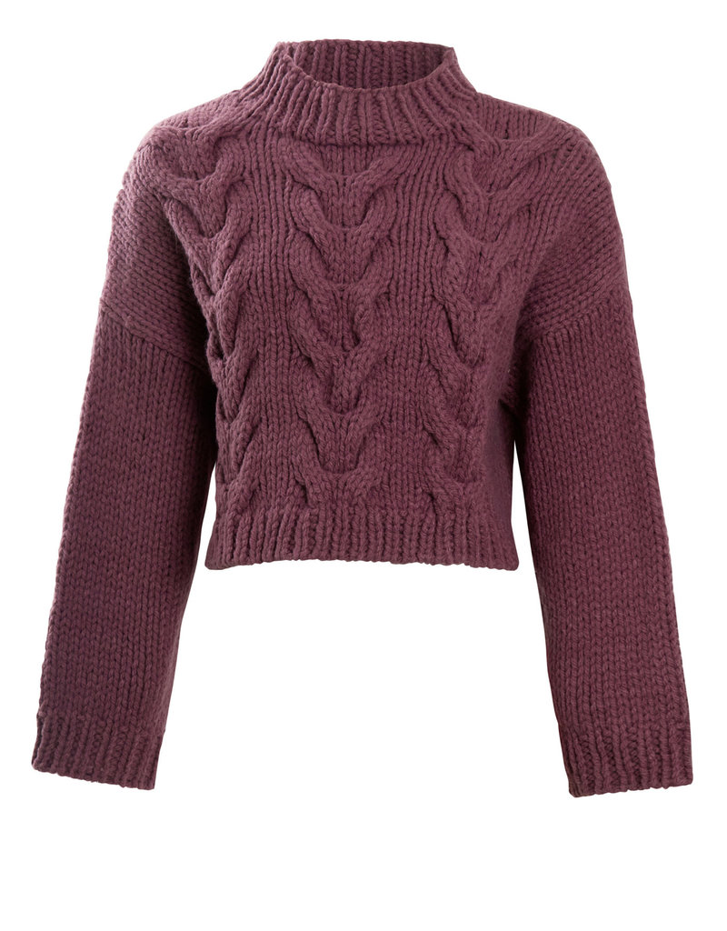 Native Youth Belle Wool Knit