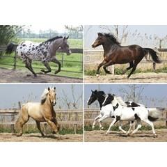 Reuzewenskaart serie 11060 - rennende paarden