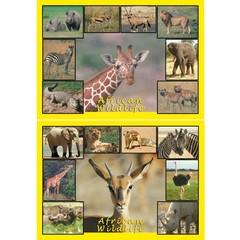 A4 Reuzewenskaarten African Wildlife