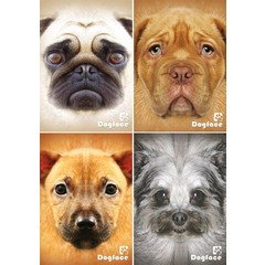 Reuzewenskaart serie 12097 - dogface