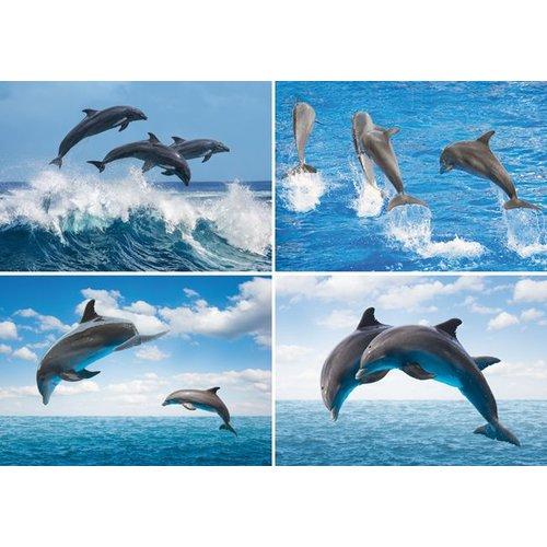 Reuzewenskaart serie 12022 - dolfijnen