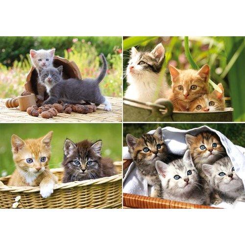 Reuzewenskaart serie 11087 - kittens