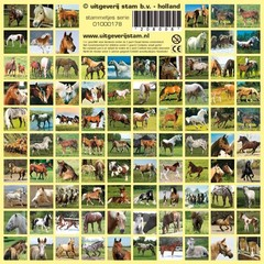 Stammetjes Paarden - Stickers