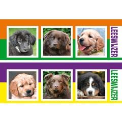 Leeswijzer honden
