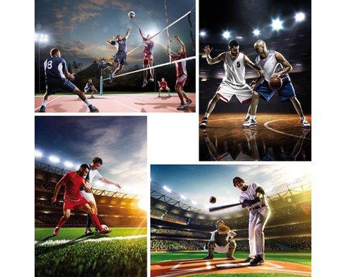 Voertuigen en sporten