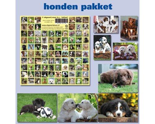 Kaarten met stickers pakketten