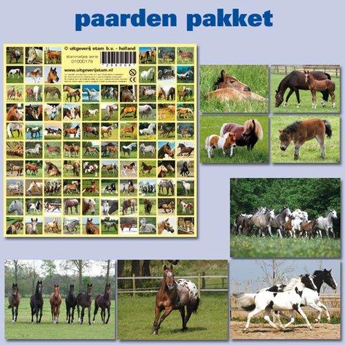 Kaarten- en sticker pakket paarden