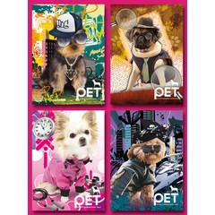 Grote ansichtkaarten  'versierde' honden