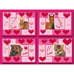 A5 Grote kaarten love animals