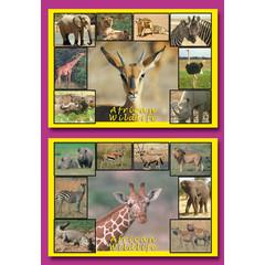Prentkaarten African Wildlife