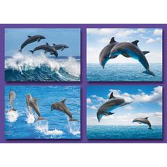 Kleine kaarten springende dolfijnen