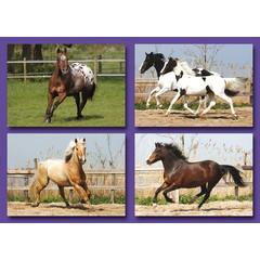 Kleine kaarten rennende paarden