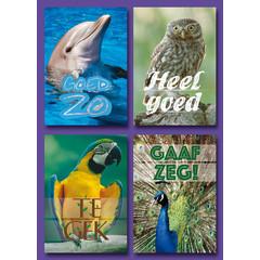 A7 Kleine kaarten dieren met 'complimenten'