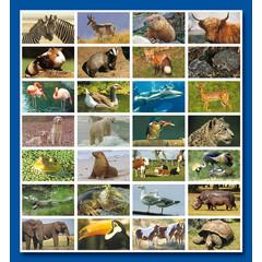 Stammetjes Stickervel dieren allerlei (1)