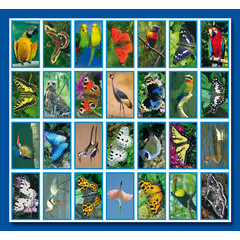Stammetjes Vlinders en Vogels - Stickervel