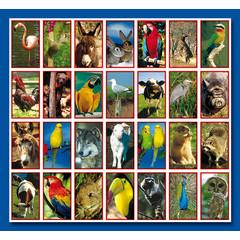 Stammetjes Stickervel vogels, bos en huisdieren