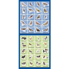 Stammetjes Weide- en Roofvogels - Stickervel