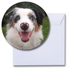 Ronde kaart hond Australian Shepherd